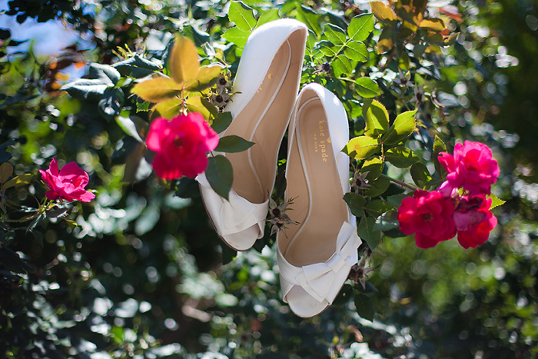 shoes and knock out roses