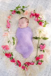 newborn with roses