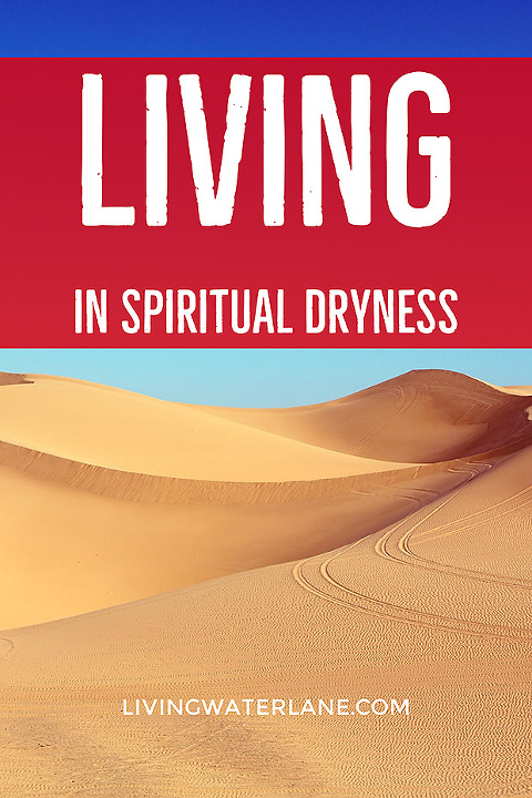 How to Keep Pressing into the Lord when you feel that you are in a Season of Spiritual Dryness.